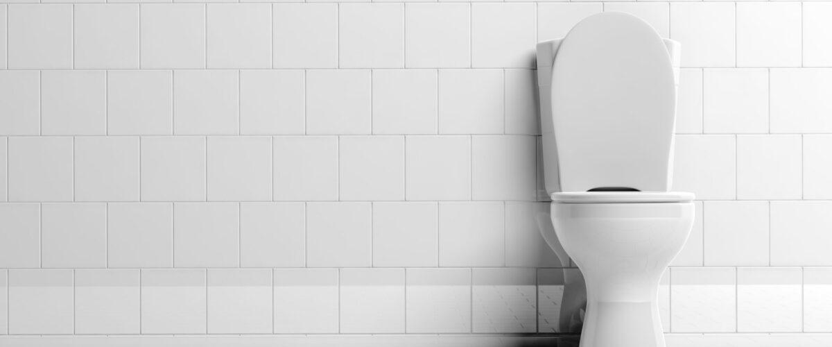 3d rendering white toilet bowl